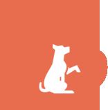 Consulenza comportamentale per cani Bergamo